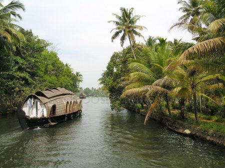 nature facts, backwaters in kerala