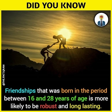 long lasting friendship facts