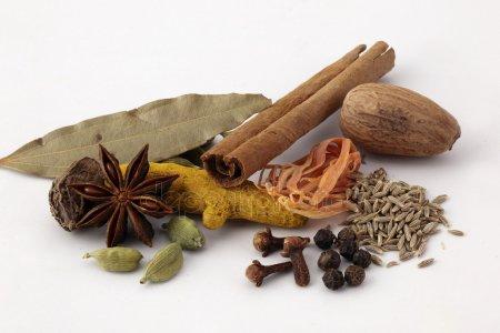 spice garden in India